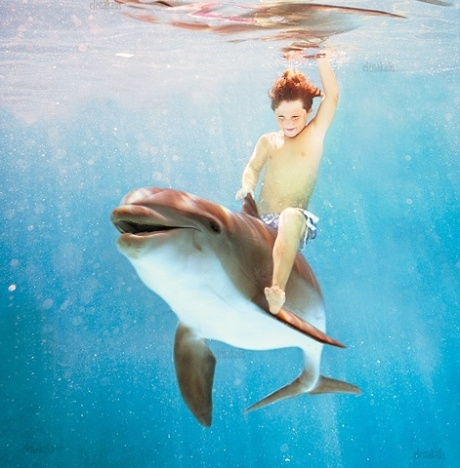 Child and dolphin